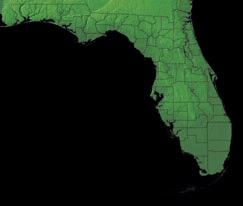 Topographic Map of Florida