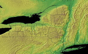 Topographic Map of New York
